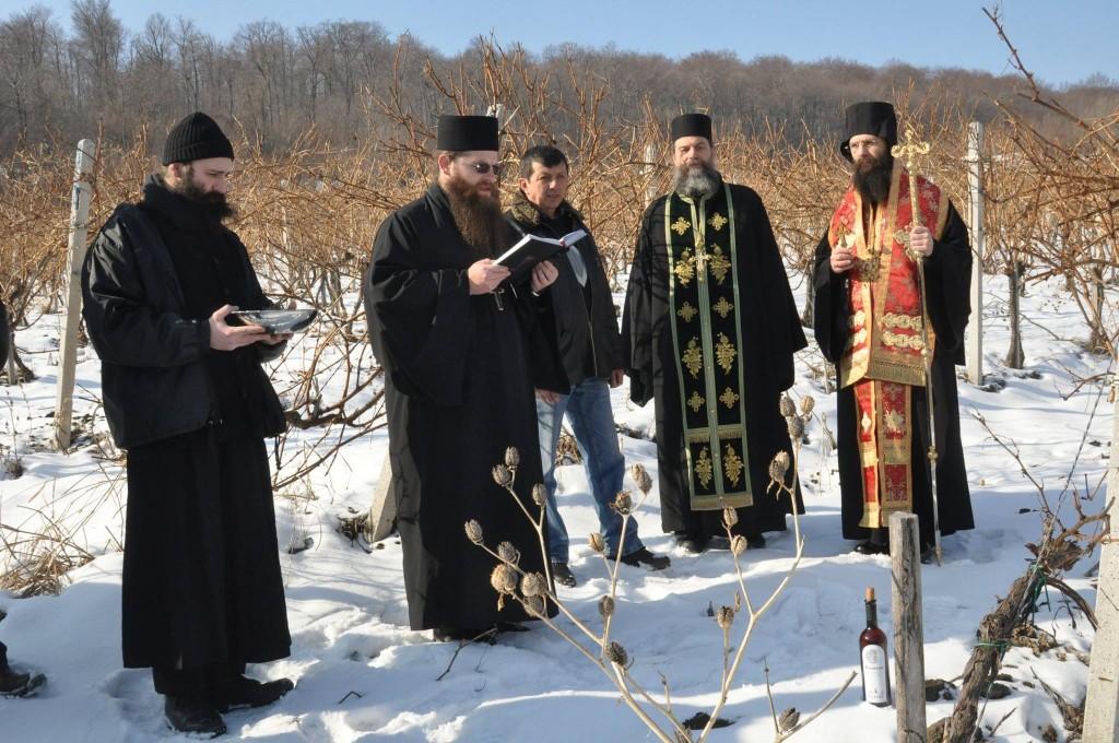 Dan Svetog Trifuna u Negotinu (izvor: facebook)