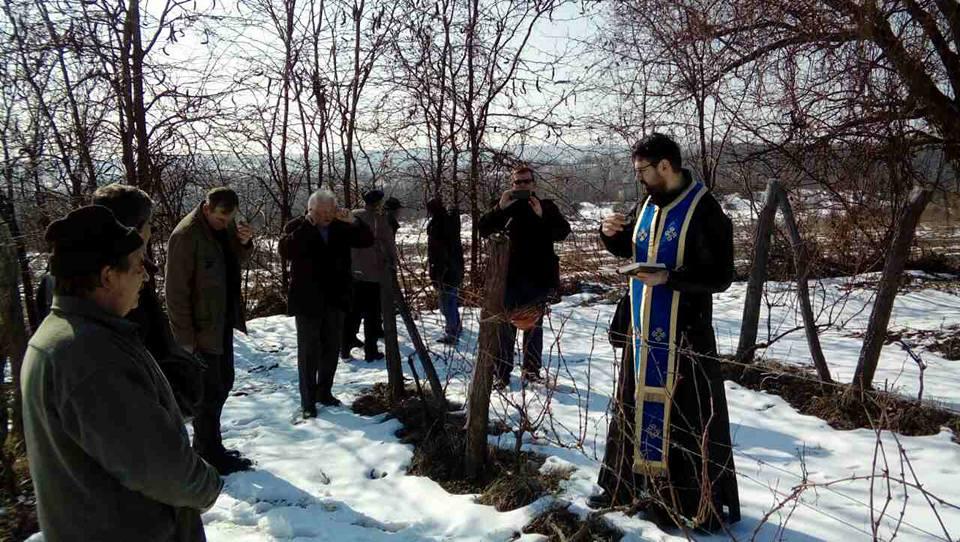 Dan Svetog Trifuna u Rogljevu, Negotin (foto: domaćinstvo Jovanović)