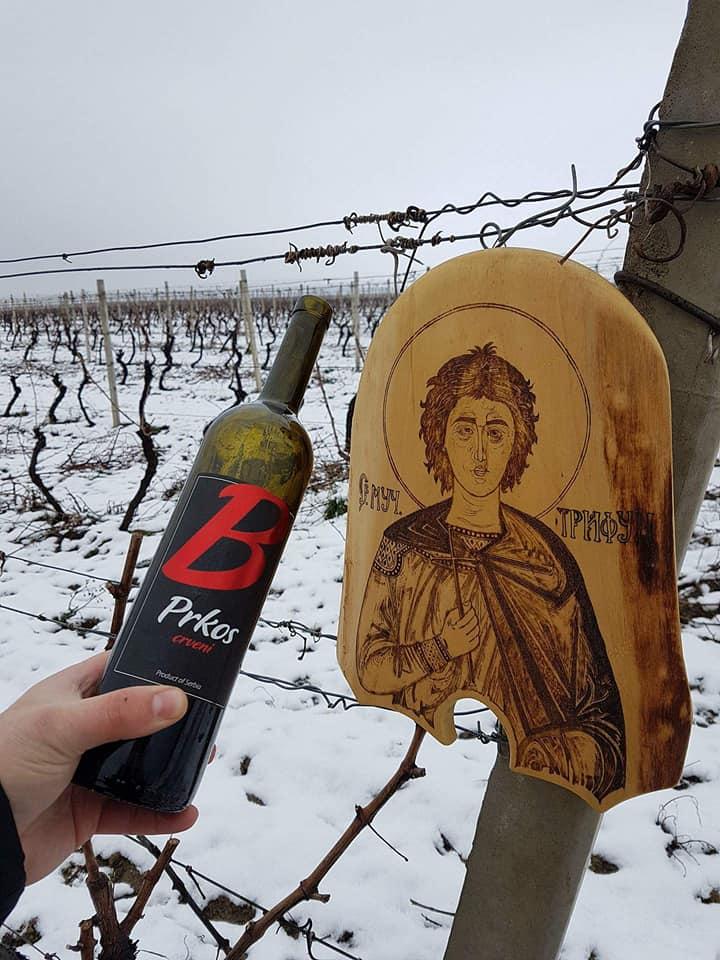 Dan Svetog Trifuna u vinariji Brestovački (foto: vinarija BrestovačkI)