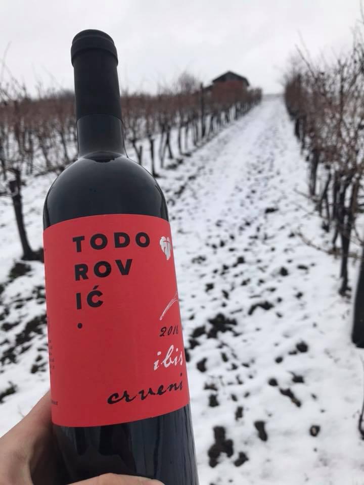 Dan Svetog Trifuna u vinariji Todorović
