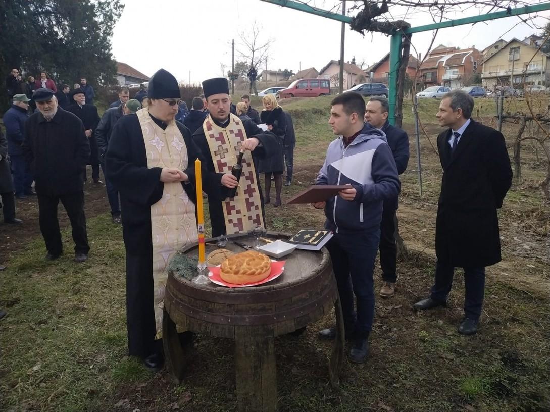 Dan Svetog Trifuna u Sremskim Karlovcima (foto: Đorđe Simović)