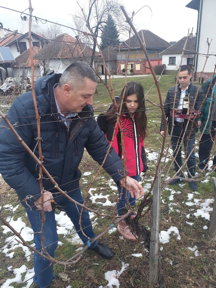 Dan Svetog Trifuna u Ljigu (foto: Podrum Lukić)