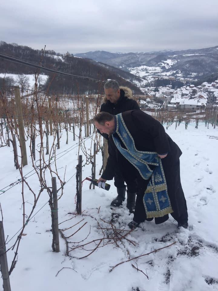 Dan Svetog Trifuna u Leposaviću (foto: vinarija Jevremović)