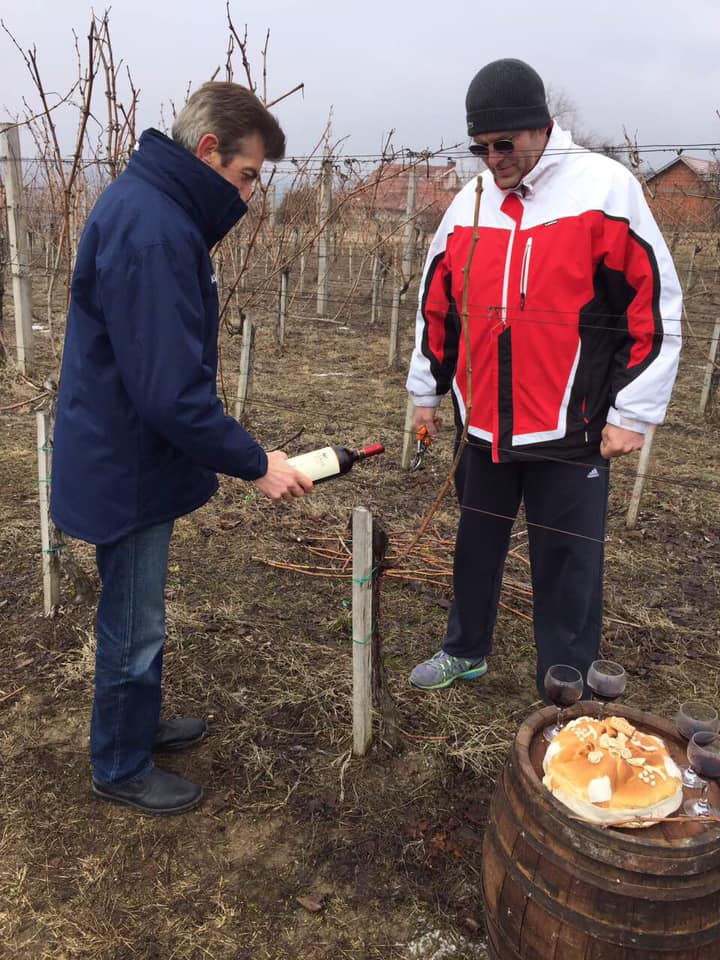 Dan Svetog Trifuna u Jagodini (foto: vinarija Vinis)